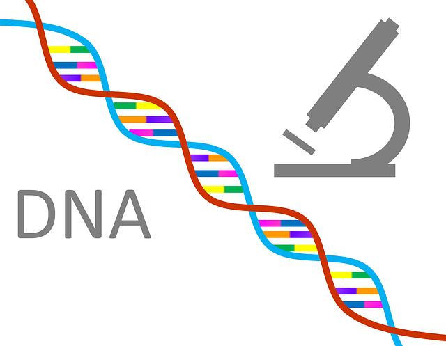 一生変わらない!遺伝的肥満リスクDNA検査「遺伝子検査革命」